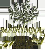 Mithimna Cretan Olive Oil